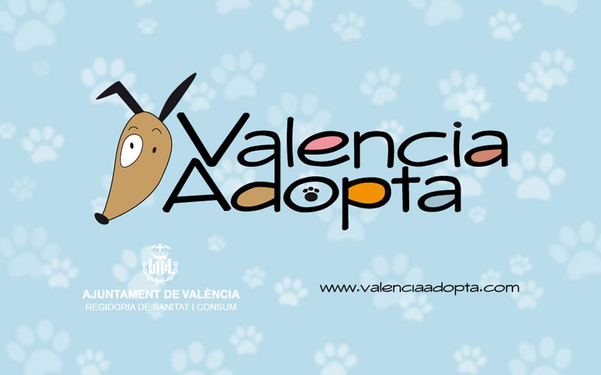 jcmedia-valencia-adopta-producciones
